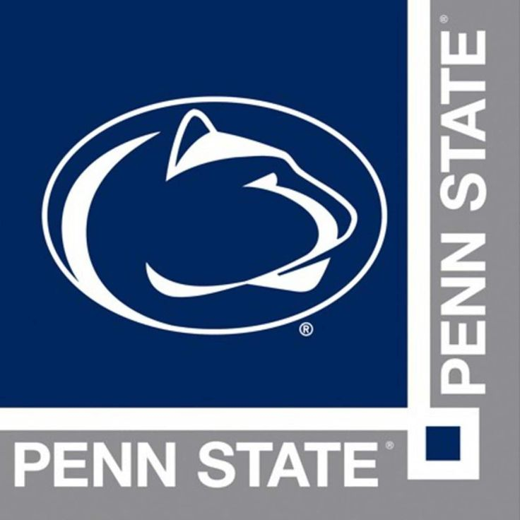 240 Ncaa Penn State Nittany Lions 2-Ply Tailgating Party Beverage Napkins, Blue