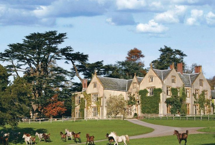 Combe House hotel in Devon: hotel of the week, August 2012