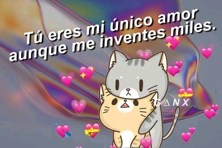 Pin De Dannia Fuentes En Para V Memes Romanticos Memes Divertidos Frases Bonitas