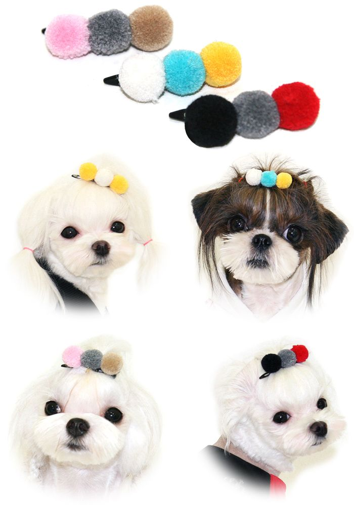 167 best its just business images on pinterest bathing doggies stylish puppy zzang pom pom hair clip available in a variety of colour combinations solutioingenieria Image collections