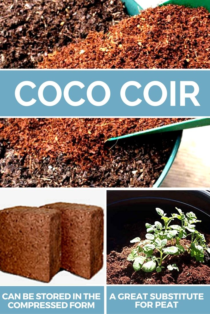 How Coco Coir is Extracted and used in gardening