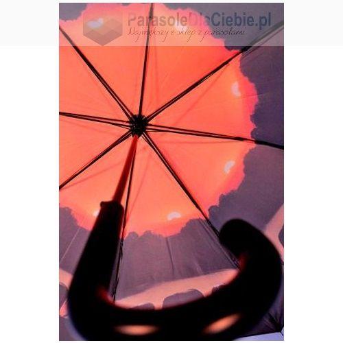 Parasol Elefanten, od dolu.JPG