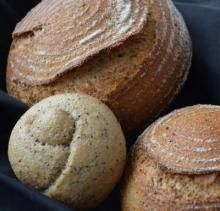Difference between dry and active yeast and how to adjust for them in different recipes -- Yeast FAQ | The Fresh Loaf