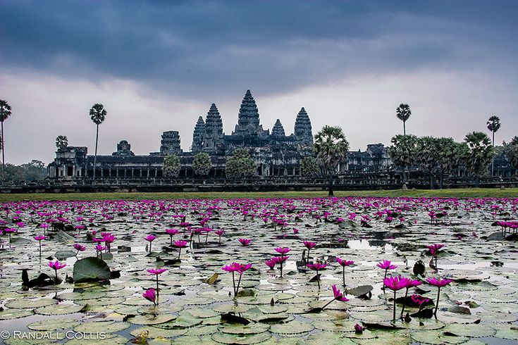 amazing-places-to-see-before-you-die-12    Angkor Wat, Cambodia