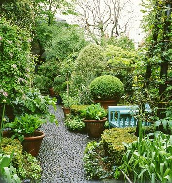 so much green and i love the pathway in this garden
