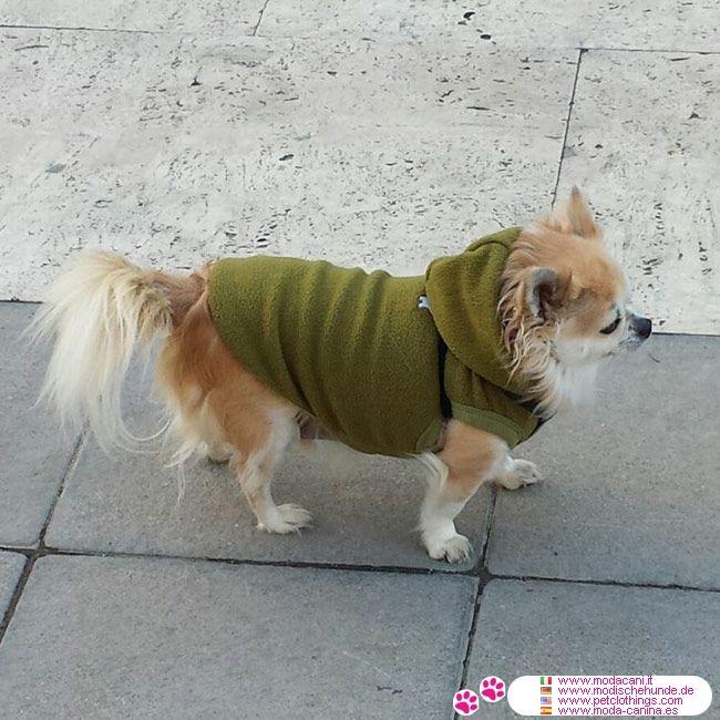 Felpa in Pile per Cani Piccoli in colore Verde #ModaCani #Chihuahua - Felpa in pile per cani piccoli, molto semplice e molto pratica, realizzata in pile, in tinta unita verde; puoi farla indossare sia in casa che fuori