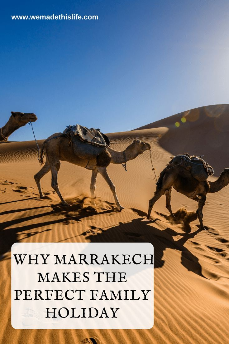 Why Marrakech Makes the Perfect Family Holiday
