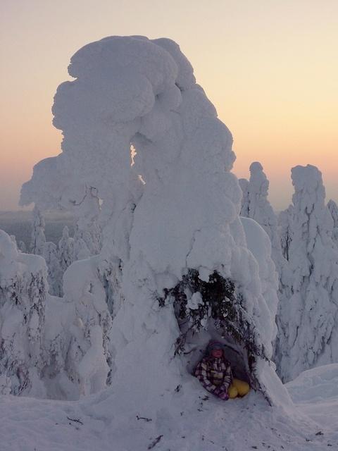 Koli National Park, Finland.