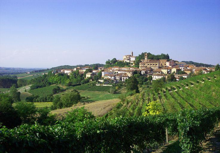 Regione Piemonte, Monferrato, Moleto (AL) Italy