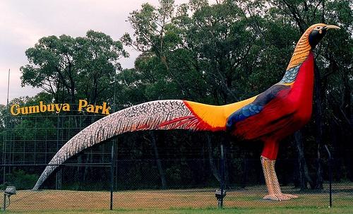 Gambuuya park