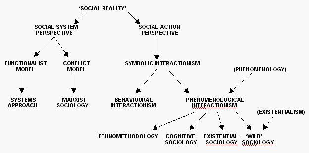 an analysis of structural and action perspectives in sociology Much of what we know about societies, relationships, and social behavior has emerged thanks to various sociology theories sociology students typically spend a great.