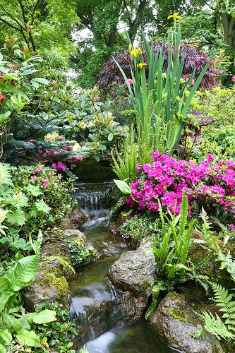 backyard stream to pond with beautiful gardens