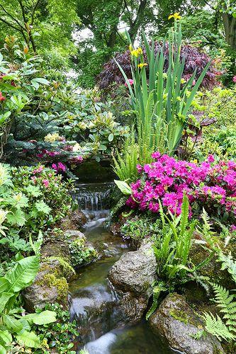 Cascade head of garden stream in late spring by Four Seasons Garden, via Flickr