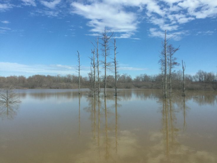 Flood Waters In Hernando, Mississippi on Sunday, March 4, 2018