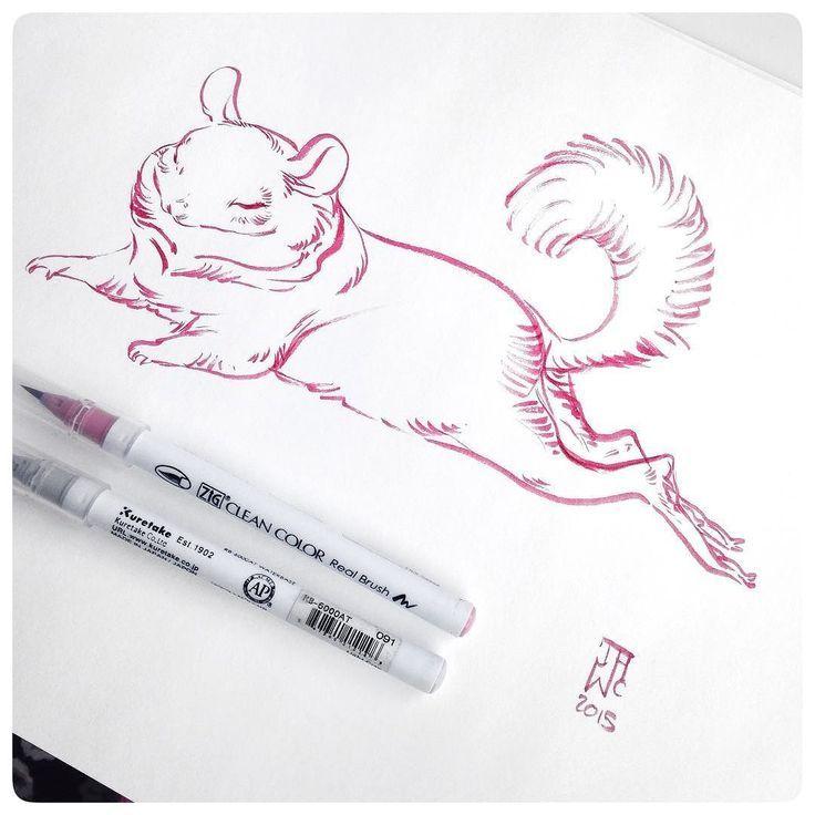 Delightful chinchilla sketch.