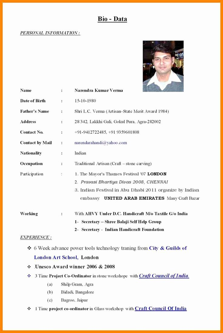 example of cv resume and bio