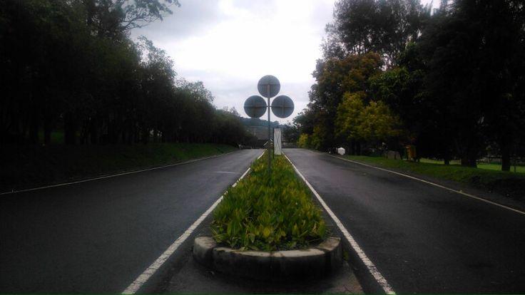 Kebun Raya Cibodas in Cibodas, Jawa Barat