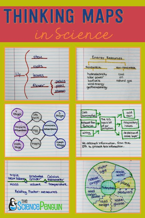 42 best thinking maps images on pinterest fractions math science thinking maps sciox Image collections