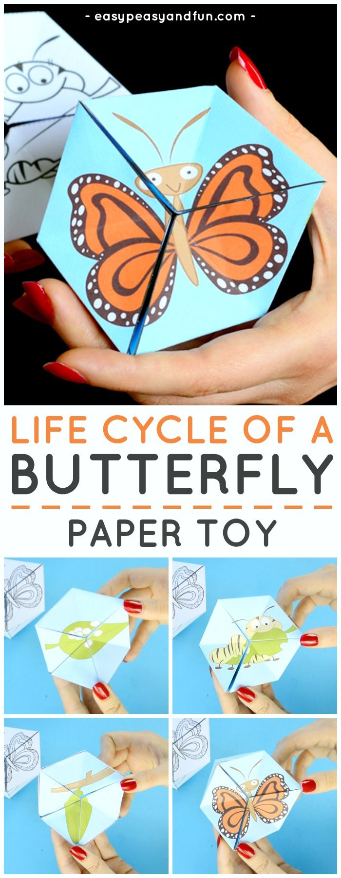 Butterfly Life Cycle Paper Toy Craft – Flextangle Template