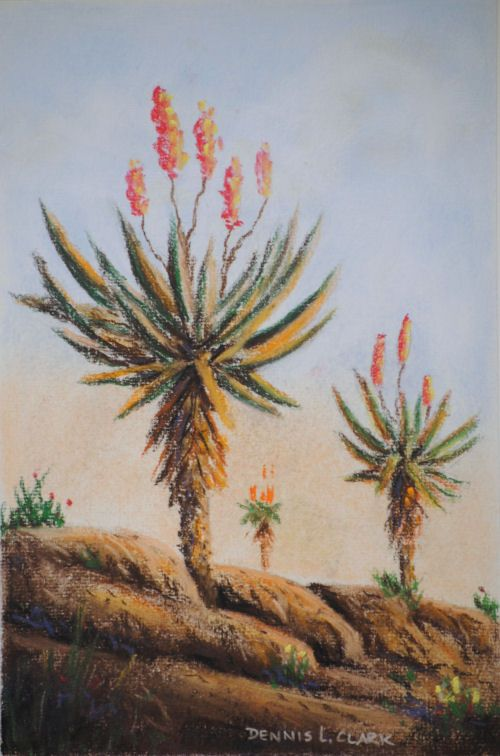 How to Draw Aloes in Pastel — Online Art Lessons