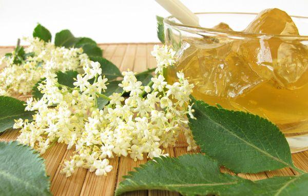 Dulceață din flori de soc | Retete culinare - Romanesti si din Bucataria internationala
