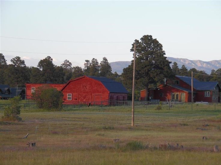 Beautiful Horse Ranch For Sale In Pagosa Springs, Colorado