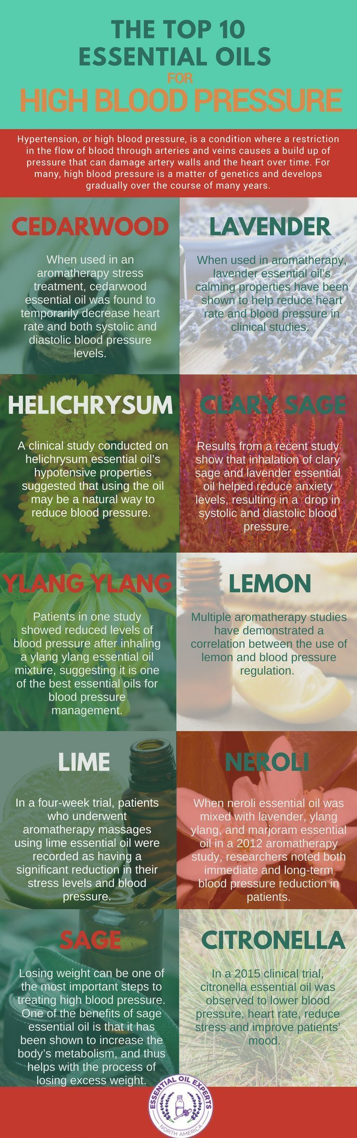 Top 10 Essential Oils for High Blood Pressure   Blood Pressure Remedies