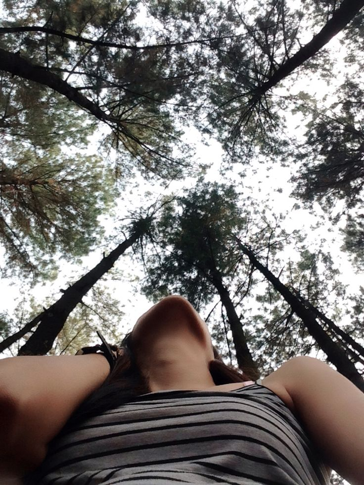 forest @GunungPancar #Sentul #Indonesia