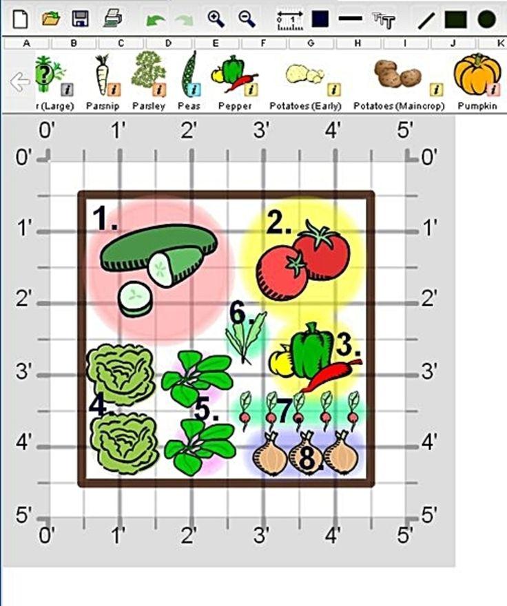 vegetable+garden+layout | Small Vegetable Garden Design, Create A Fresh Salad Garden