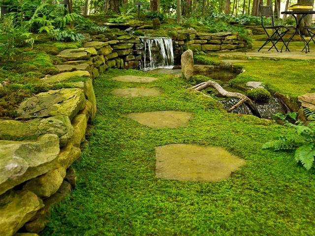 moss lawn replace your grass with an easier to maintain zen like japanese - Garden Ideas To Replace Grass