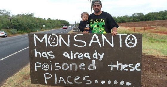 occupy_monsanto_molokai48