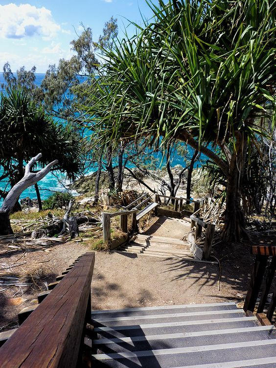 The gorgeous coastal walkway on North Stradbroke Island is an easy day trip from Brisbane or the Gold Coast.  We've watched so many whales, dolphins and turtles from along here