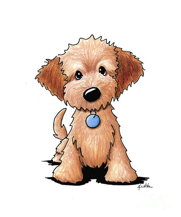 Goldendoodle Puppy Art Print By Kim Niles Cute Dog Drawing Dog Drawing Puppy Art