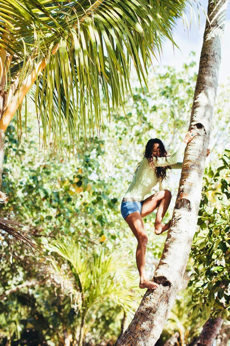 Climbing for coconuts is a Motion Art