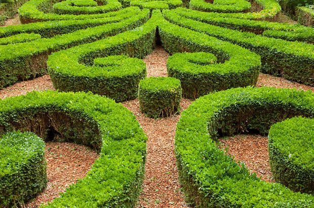 French+Garden+Design | The Fantastic Designs of the French Formal Garden
