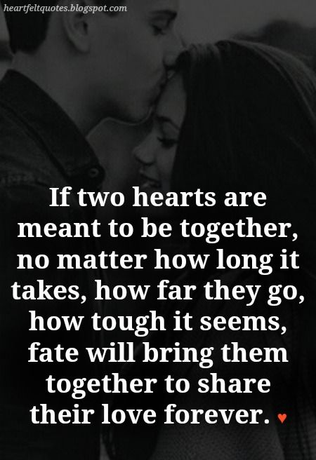 The Couples that are meant to be love quotes.