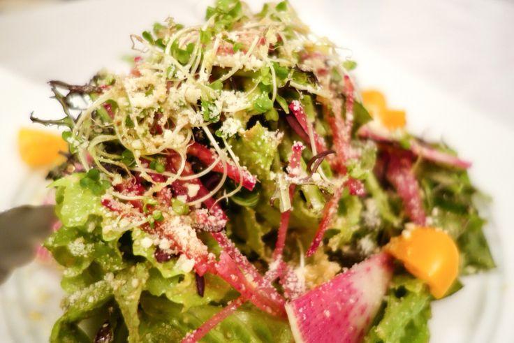 葉野菜のサラダ