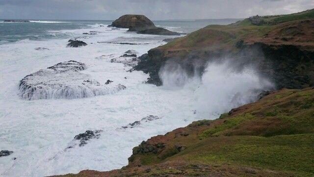 Nobbies blowhole Phillip island, victoria