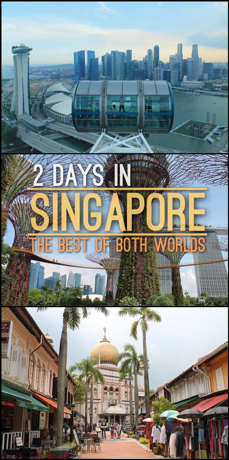 "Planning to spend 2 days in Singapore? There is so much to see, including beaches, historical districts, futuristic ""Supertrees"" and world class zoos. This Singapore itinerary will show you the best of both worlds, including popular tourist sights and local attractions.                                                                                                                                                                                 More"