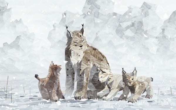 Lynx mother and cubs from Shelter 2.