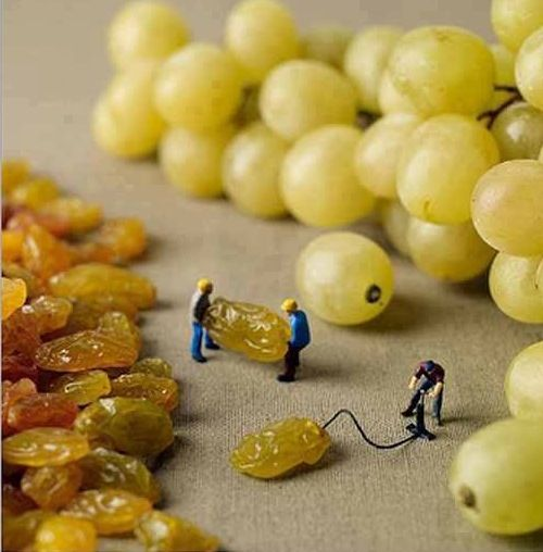 not prunes but another fab dried fruit.  what a pic!