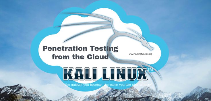In this article we will be looking at an alternative for installing Kali Linux on a dedicated machine or a local Virtual Machine: Kali Linux in the cloud.