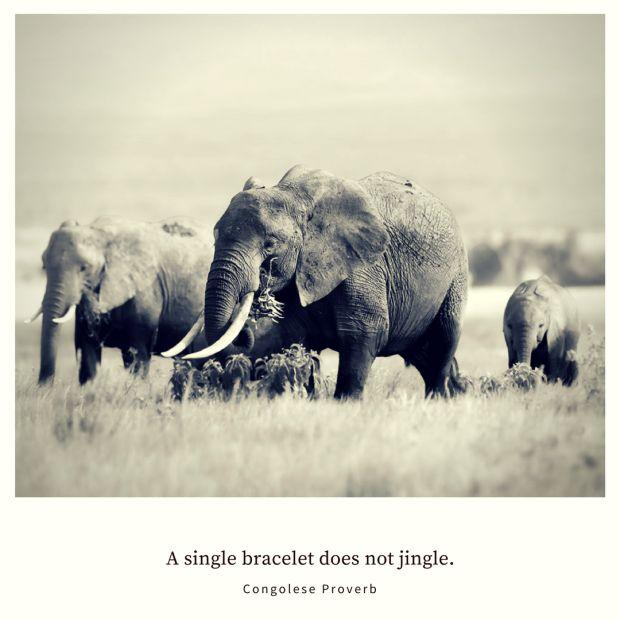 A single bracelet does not jingle. – Congolese Proverb