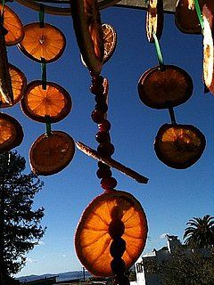 "What a great winter time ""chandelier"" for feathered friends...not to mention all the gorgeous colors of the dried oranges and cranberries would make some pretty outdoor holiday decorations."
