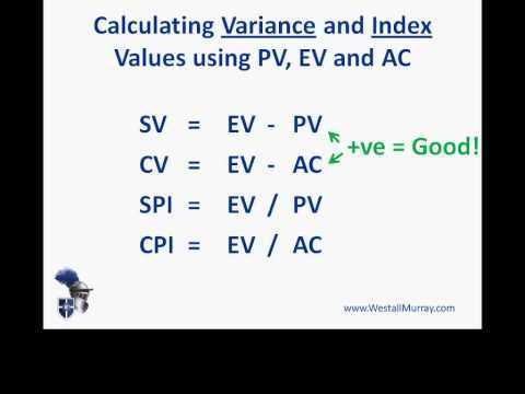 Earned value management systems (EVMS) - PMI