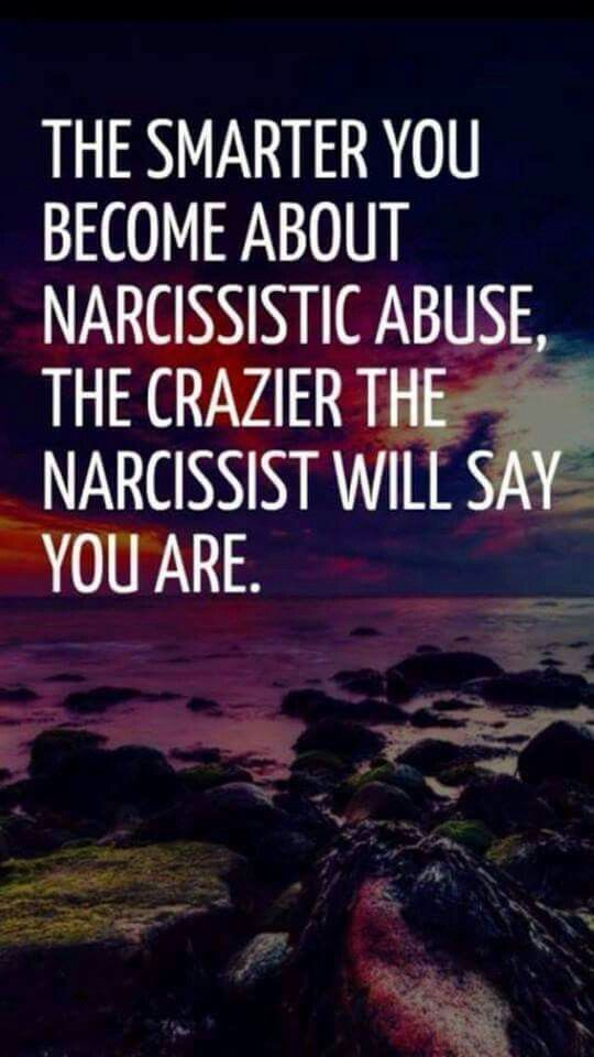 A recovery from narcissistic sociopath abuse- thanks to my ex and his family who made him into what he is