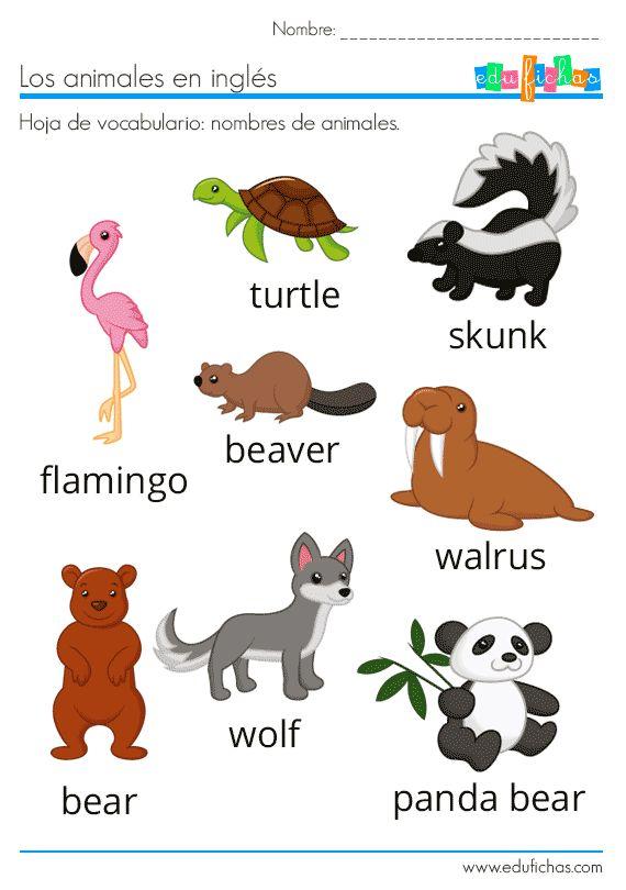 Animales En Inglés Vocabulario Ejercicios Flashcards Animales En Ingles Ingles Basico Para Niños Ingles Para Preescolar