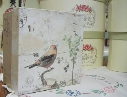 Mister Bird we await your Singing!