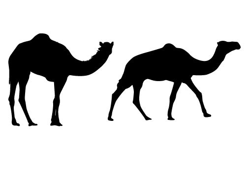 Free Camel Silhouette Vector to use it on your personal and commercial projects.