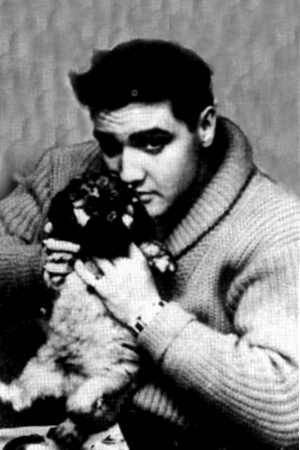 ~Elvis~ - elvis-presley Photo